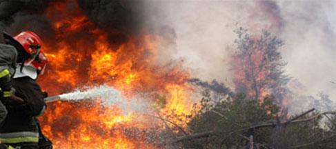 جندوبة: نشوب 5 حرائق جديدة بالغابات