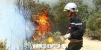 الكاف: النيران تلتهم مساحات غابية كبيرة بثلاث معتمديات