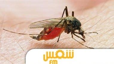 خبر وطني وزارة الصحة: 3 حالات وفاة بفيروس حمى غرب النيل فى تونس