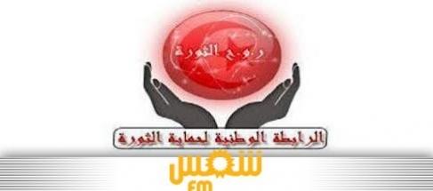 وفودا أنصار الرابطة الوطنية لحماية الثورة كامل تراب media_temp_137224939