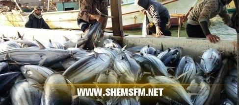 Monastir : saisie de 8 tonnes de thon rouge  Media_temp_1445291549