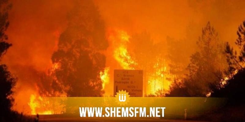 Portugal : le feu de forêt fait 62 morts selon le dernier bilan