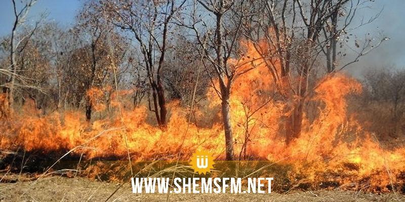 Kef Matrise De 4 Incendies La Dlgation De Ksour