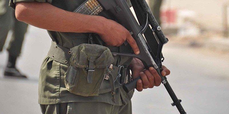 الجيش الوطني يحجز شاحنة تهريب على متنها 256 سلاحا ناريا