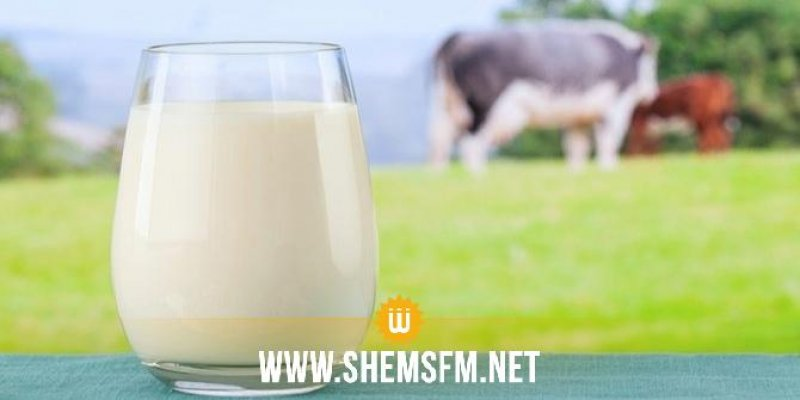 Omar El Behi: L'importation de 10 millions de litres de lait représente moins de 5 jours de consommation