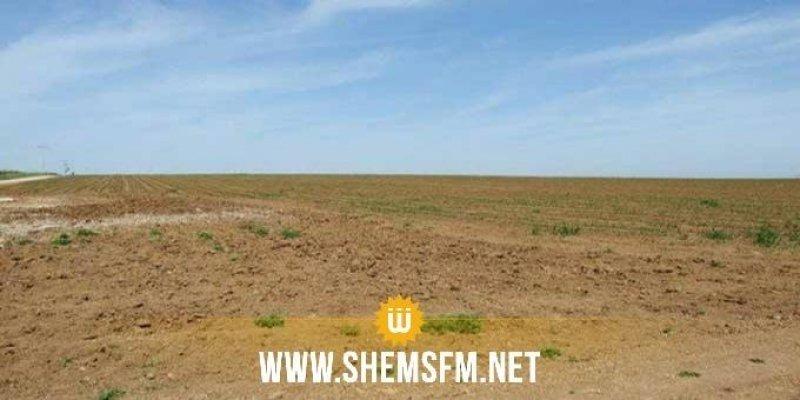 سليانة : استرجاع 42 هكتارا من الأراضي الدولية المستولى عليها