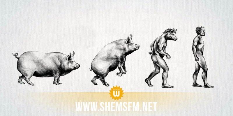 ثورة طبية باتت على بعد خطوة واحدة: نقل أعضاء الحيوانات إلى البشر
