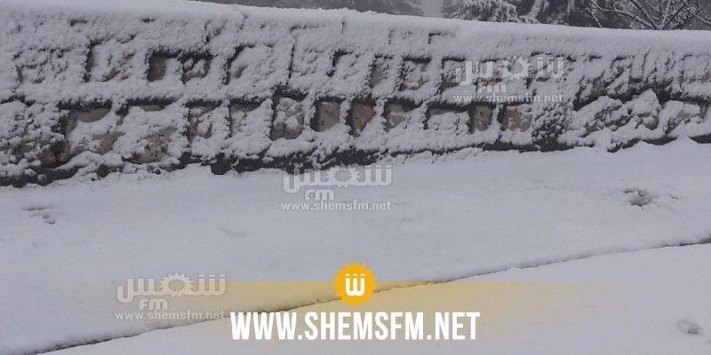جندوبة: تواصل تساقط الثلوج والوضع مستقر