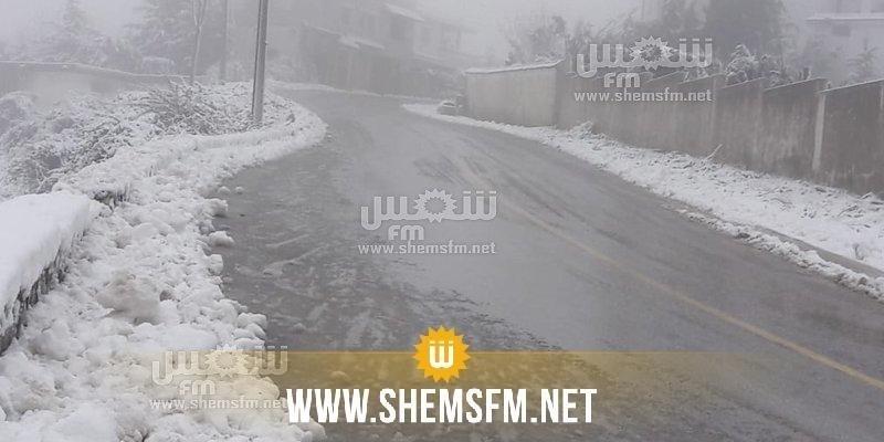 الشاهد يكلف عددا من الوزراء بالتنقل إلى المناطق التي تشهد موجات من البرد والثلوج