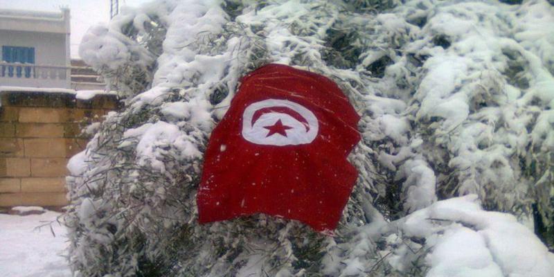 وزارة الفلاحة تتخذ جملة من الإجراءات إثر موجة البرد وتساقط الثلوج في عدد من ولايات البلاد