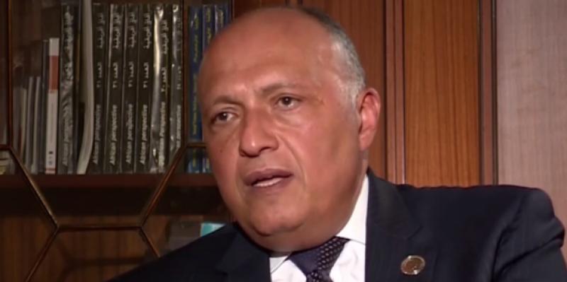 وزير الخارجية المصري: 'الدور التركي في ليبيا مقلق'