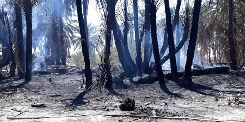 قبلي: إندلاع حريق بإحدى واحات عمادة الجرسين