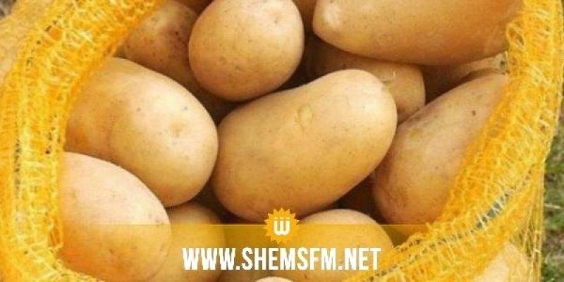 نابل: حجز 44.2 طنا من البطاطا و40 طنا من التفاح