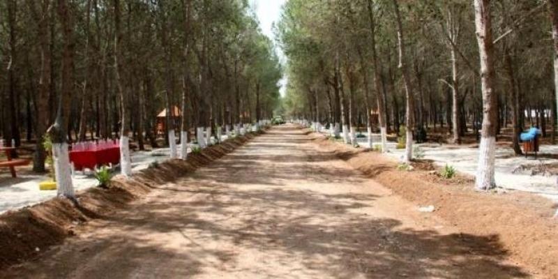 Inauguration à El Agba de la 1ère forêt urbaine en Tunisie