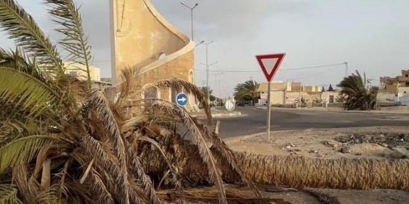 الرياح تجاوزت 100 كم/س بقبلي: أشجار ونخيل على الطرقات وبيوت محمية سقطت بالكامل