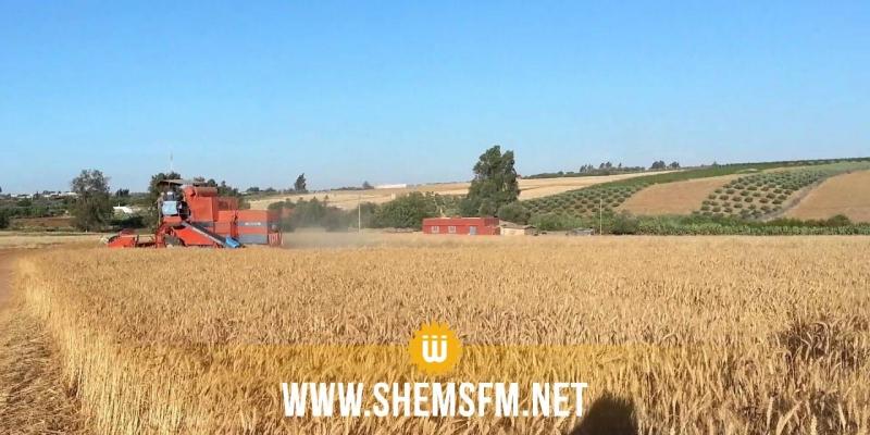 الكاف: إضراب مفتوح بالمراكز الخاصة لتجميع الحبوب