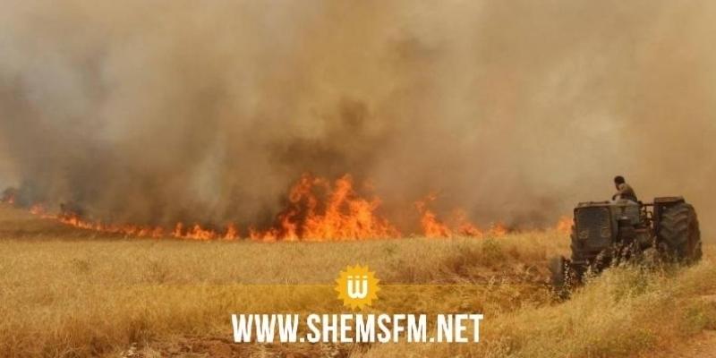 الحماية المدنية: تسجيل 552 حريقا 96% منها تقف خلفها عوامل بشرية