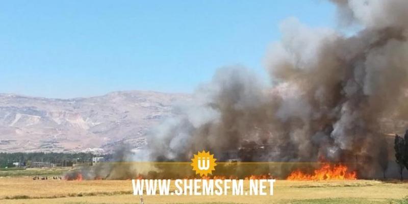 سليانة: حريق يأتي على 9 آلاف متر مربع من صابة القمح والحصيدة و60 حزمة تبن