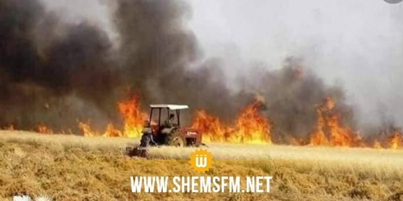 الدهماني: حريق يلتهم أكثر من 20 هكتارا من الحبوب