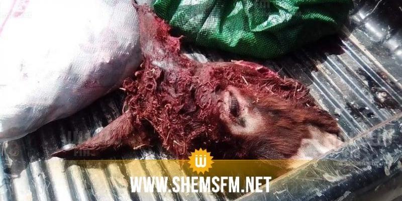 (بالصور) منزل تميم: كهل يذبح الحمير في منزله ويوزع لحومها على القصابين