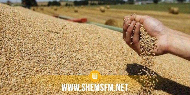 وزارة الفلاحة ومنظمة الاعراف تتفقان على فتح مراكز تجميع الحبوب مساء اليوم