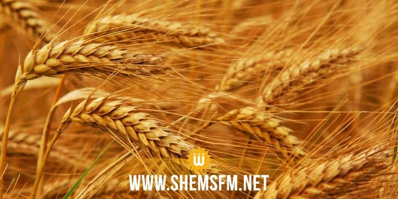 تعليق نشاط تجميع وتخزين الحبوب