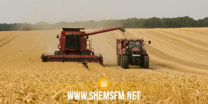 الكاف : عودة المراكز الخاصة لتجميع الحبوب للعمل وتعليق الإضراب