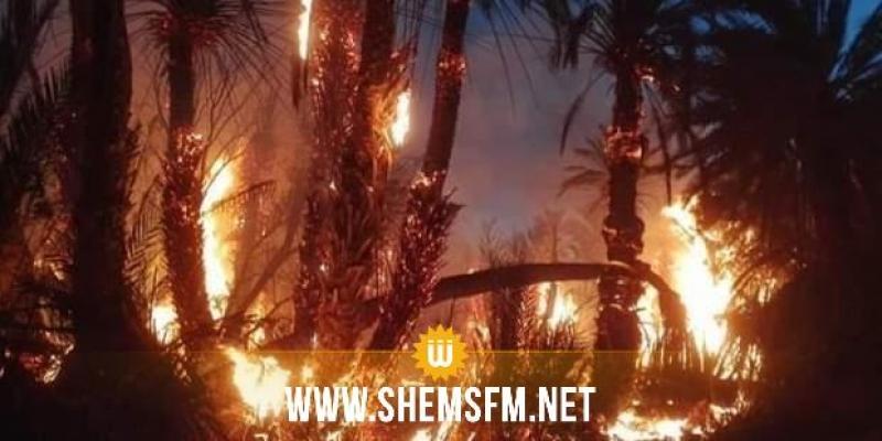 قبلي: نشوب حريق في واحة بالجديدة