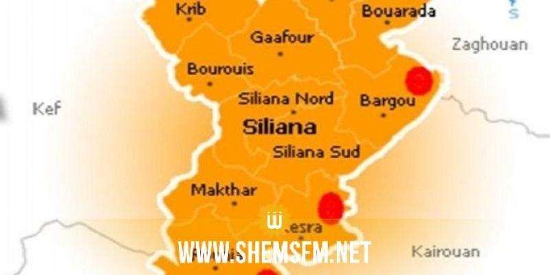 سليانة: نقابة قوات الأمن الداخلي تهدد بمقاطعة تأمين المهرجانات الصيفية