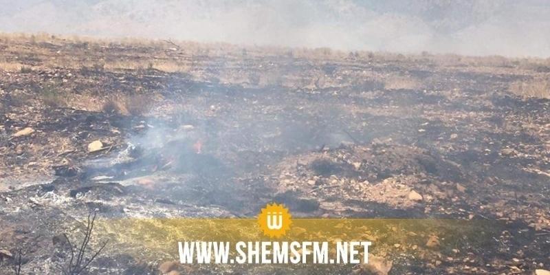السيطرة على حرائق جبال القصرين ماعدى مرتفعات جبل الشعانبي