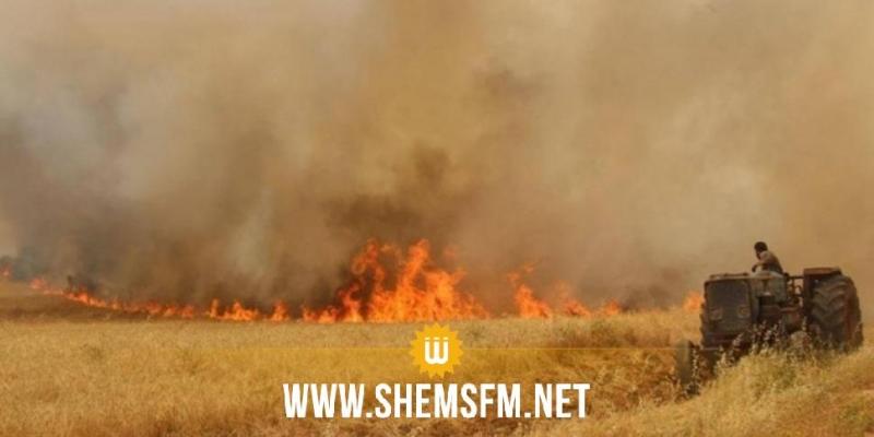 سليانة: السيطرة على حريق أتى على 3 هكتارات من الحصيدة