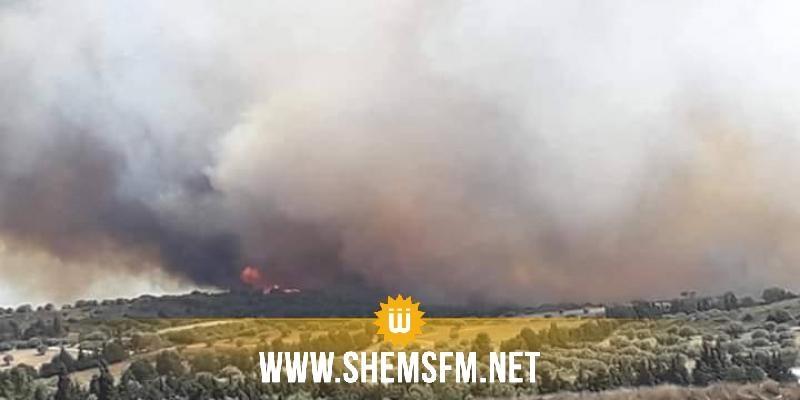 نابل: السيطرة على حريق أتى على قرابة 120 هك من أشجار البندق