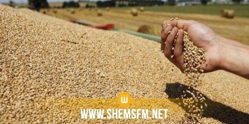 بنزرت: تجميع 1360 ألف قنطار من الحبوب وبعض مراكز الخزن تجاوزت طاقة استيعابها