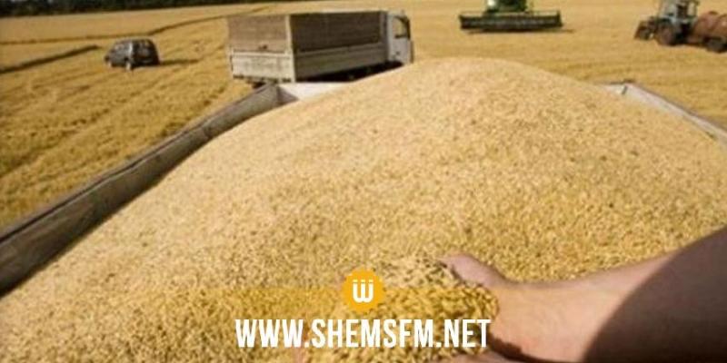 اتحاد الفلاحة يدعو سلطة الإشراف لإيجاد حلول عاجلة لرفع كميات الحبوب المجمعة في الهواء الطلق