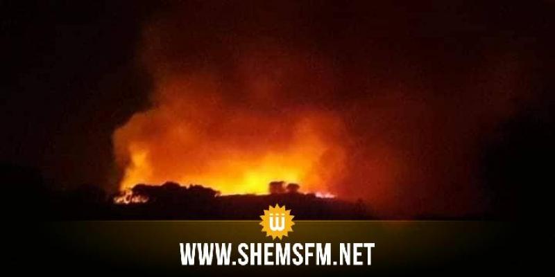 بنزرت : اندلاع حريقين بجبل الناظور وجبل الزواوين