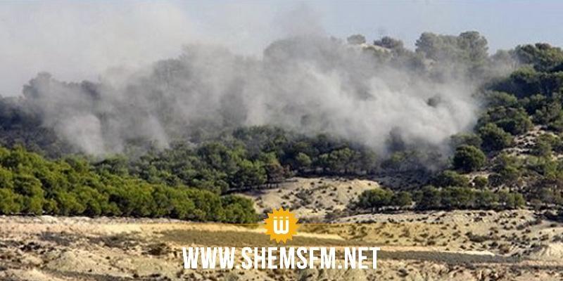 القصرين: نشوب حريق في جبل سمامة