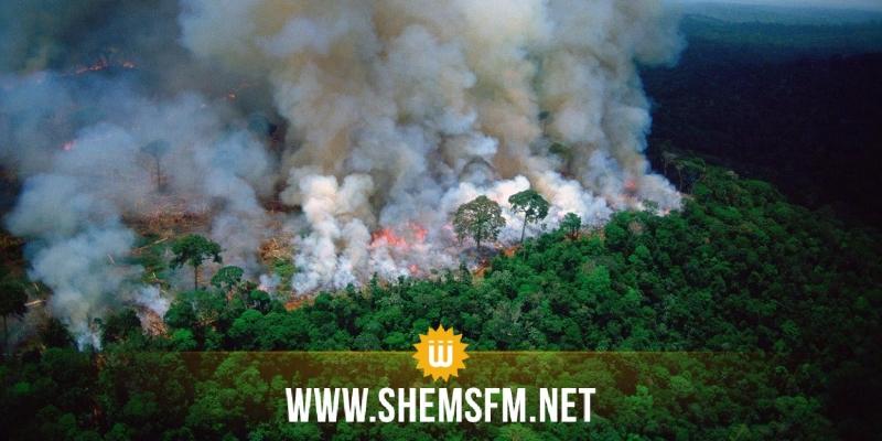 حرائق غابة الأمازون قضية رئيسية في جدول أعمال قمة السبع