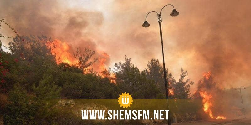 الحرائق تجتاح لبنان بسبب موجة الحر