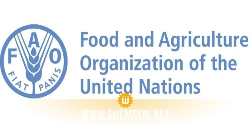 L'organisation FAO recrute pour son bureau en Tunisie