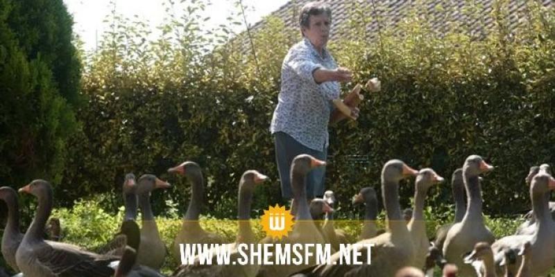 البط يكسب قضية أمام المحاكم الفرنسية