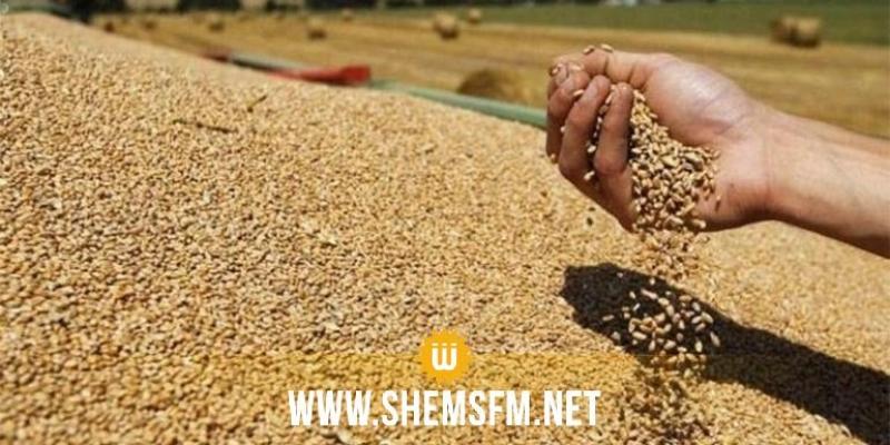 سمير الطيب: الإنتاج الوطني من الحبوب لا يغطي سوى 50 بالمائة من حاجيات البلاد