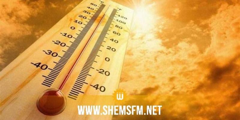 2019 a été la deuxième année la plus chaude de l'histoire
