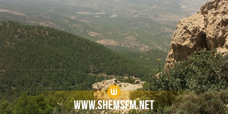 القصرين : العثور على مخيم للإرهابيين بأحد المرتفعات الجبلية