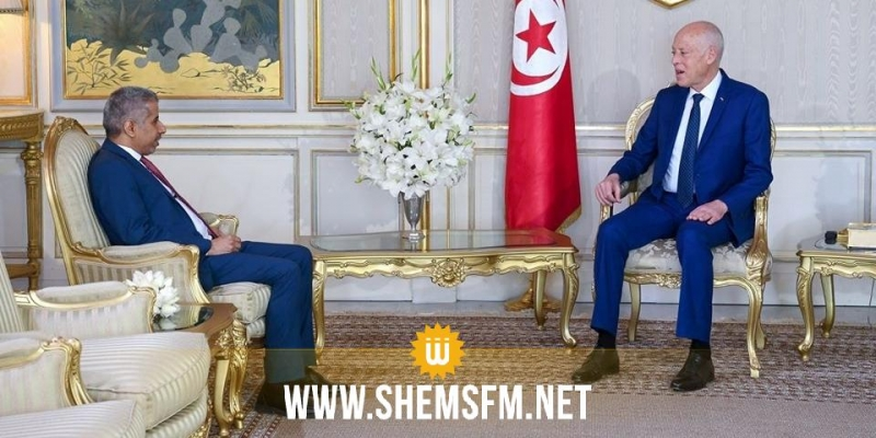 رئيس الدولة يتحادث مع الأمين العام لمجلس وزراء الداخلية العرب