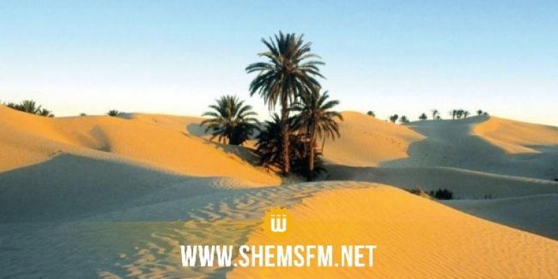 كورونا: المدير الجهوي للصحة بقبلي يُحذر من توافد الأهالي بكثافة على الصحراء