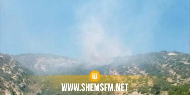 بنزرت: السيطرة على حريق شب بالمنطقة الغابية العيون في غار الملح