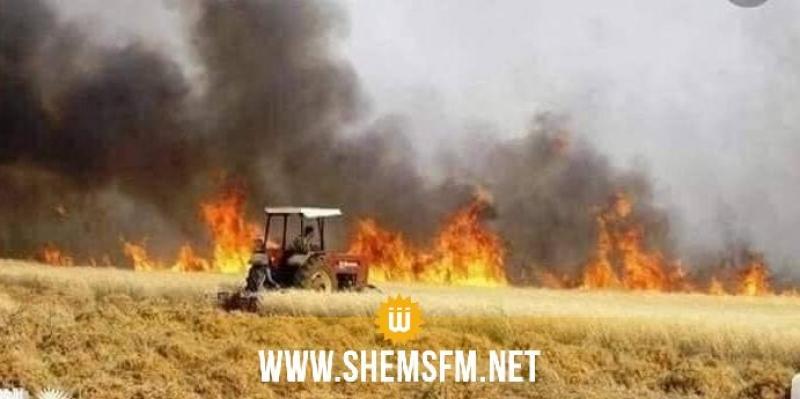 بنزرت: حريق يأتي على 1.5 هك من بقايا حصاد في تينجة