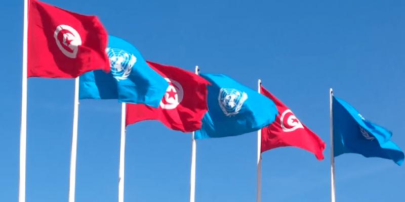 مستشار رئيس الجمهورية: 'مصادقة مجلس الأمن على قرار مجابهة جائحة كورونا مكسب ونجاح لتونس'