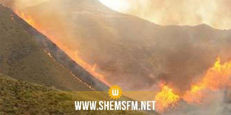 السيطرة على حريق بجبل النحلي