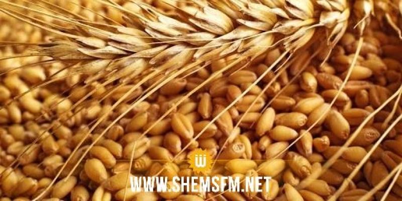 وزير الفلاحة:''صابة الحبوب للموسم الحالي لن تغطي سوى 5 أشهر من الاستهلاك''